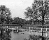 Kew Pond needs help!